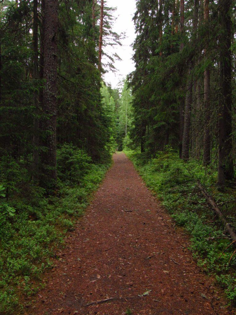 Gauja Trail