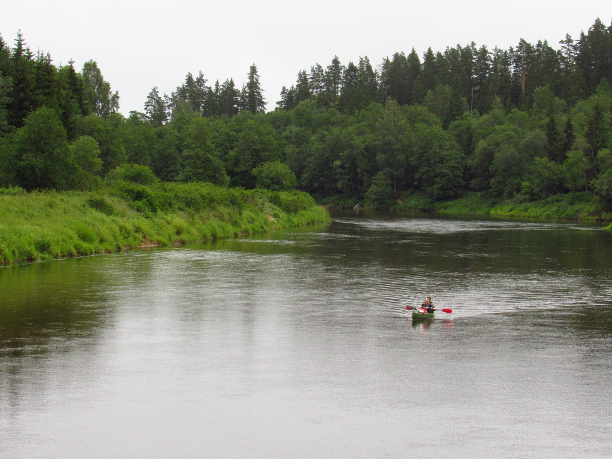 Gauja kayakers