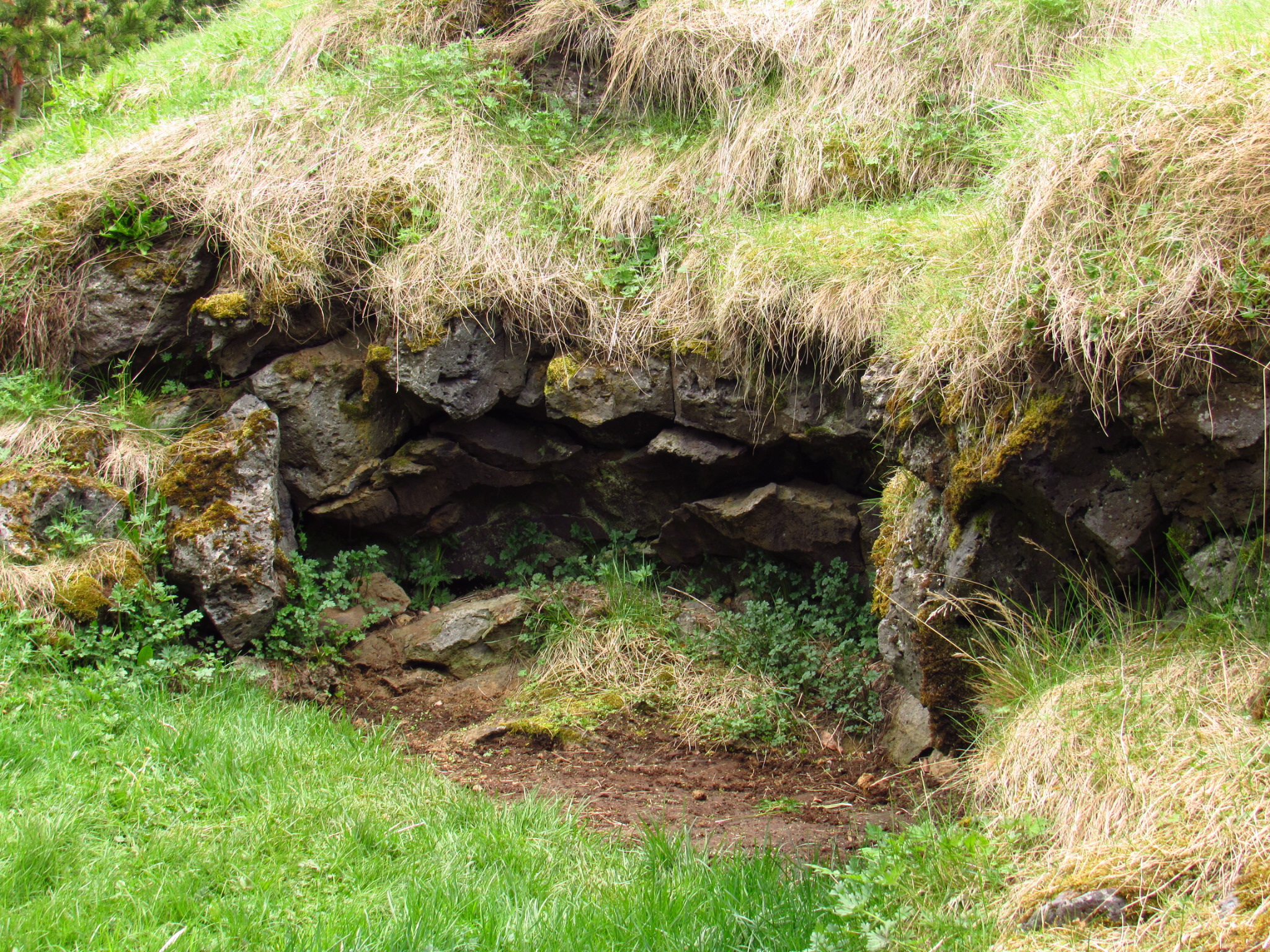Hafnarfjordur elf cave
